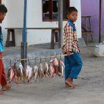 Foto Fischfang, dent.konstanz Indonesien